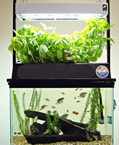 ECO-Cycle-Aquaponics-Kit-w-Dual-T5-Grow-Light-0