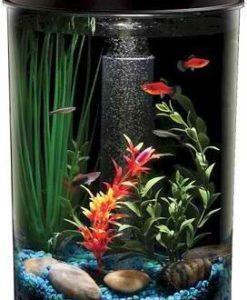 Fish-Aquatic-Supplies-Aquaview-3-Gallon-360-Aquarium-0