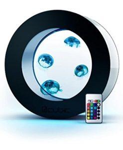 Orbit-20-Desktop-Jellyfish-AquariumTank-2015-Version-0