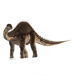 Dinosaurs-Advanced-Graphics-Life-Size-Cardboard-Standup-0