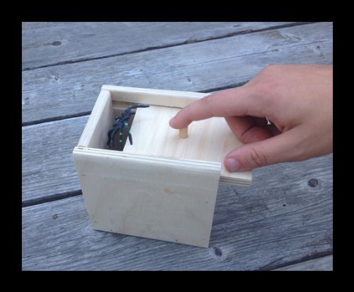 Hilarious-Scare-Box-Spider-Prank-Wooden-Scarebox-Joke-0-1