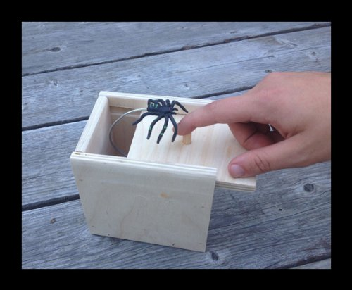 Hilarious-Scare-Box-Spider-Prank-Wooden-Scarebox-Joke-0-2