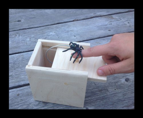 Hilarious-Scare-Box-Spider-Prank-Wooden-Scarebox-Joke-0-3