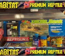 Zoo-Med-Laboratories-SZMNTB21-Reptihabitat-20-Long-Beard-Dragon-Starter-Kit-0