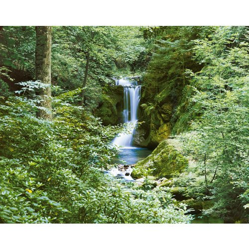 Brewster-DM279-Waterfall-In-Spring-Large-Wall-Mural-0
