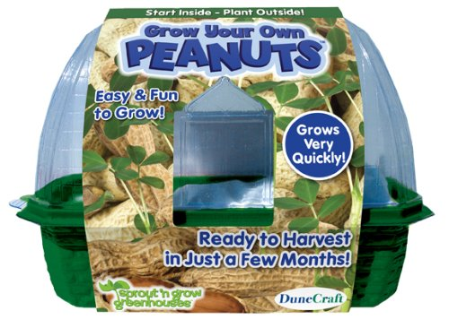 DuneCraft-Sprout-n-Grow-Greenhouses-Peanuts-0