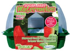 DuneCraft-Sprout-n-Grow-Greenhouses-Sugar-Baby-Watermelons-0