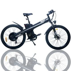 E-go-Electric-E-Bike-Hydraulic-Brake-1000w-48v13ah-Black-Pedal-Assist-Moped-0