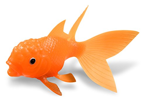 Fred-Friends-KOI-TOY-Light-Up-Bath-Goldfish-0