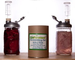 Go-Ferment-Wide-Mouth-Mason-Jar-Mold-Free-Anaerobic-Fermenting-Kit-w-Recipe-E-book-0