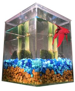 Classic-EcoAquariumTM-Complete-Pet-Habitat-with-Betta-Fish-0