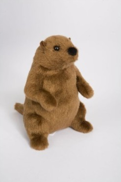 Mr-G-Groundhog-6-by-Douglas-Cuddle-Toys-0