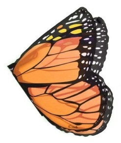 Orange-Monarch-Wings-0